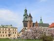 Wawel in Cracow