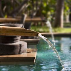 Fontaine en bambou dans un jardin