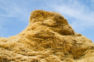 stack of straw on a background blue sky with clouds