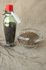 Birch buds and medicinal tincture made from them