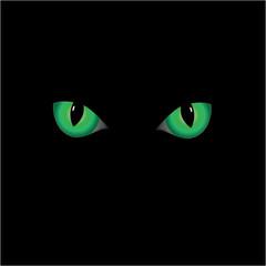 Cat' s eyes