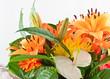 bouquet de fleurs, anthurium blanc, amaryllis et gerberas