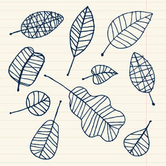 Set of leaf sketch for you design