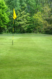 Vibrant image of golf course with flag and fairway in sun poster