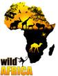 Fototapeten,afrika,tier,kamel,colour
