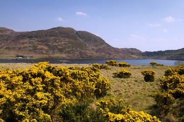 Mountains of Achill Island, Co. Mayo - Irleland