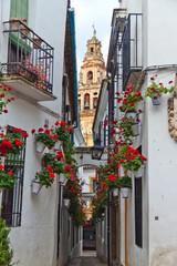 Spanien, Cordoba, Calleja de las Flores