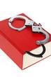 Handschellen und Gesetzbuch
