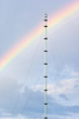 Tower antenna against rainbow