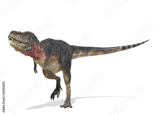 tarbosaurus looking for food
