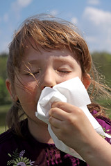 Allergies - the girl wipe your nose with a tissue