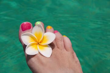 Pied de femme, fleur de frangipanier et piscine