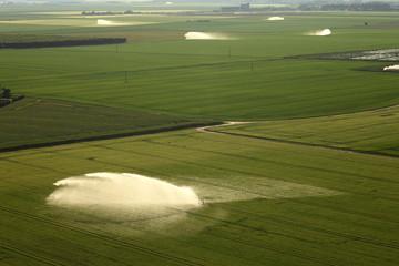 irrigations