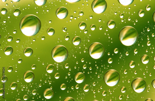 drop on leaf