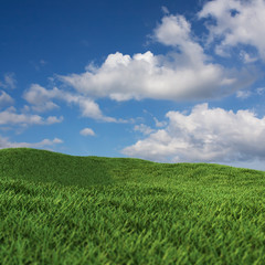 green field blue sky cloud