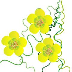 Нарисованный желтый цветок