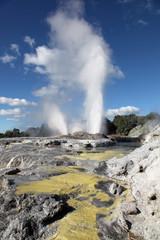 Pohutu geysers Rotorua New Zealand