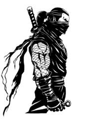 shinobi ninjas