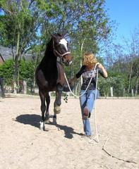 Spanischer Schritt mit Pferd an der Hand