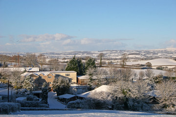 Devon in the snow