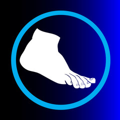 human foot vector illustration