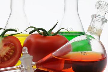 tomate im labor