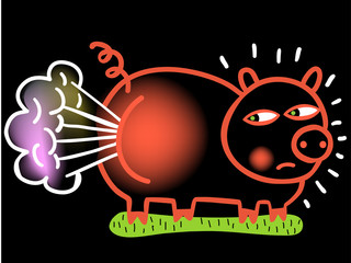 Farting pig in color