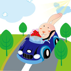 Rabbit drove to date