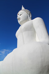 The Big White Buddha in thailand temple