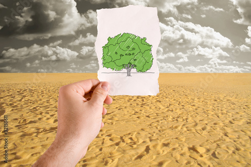Tree in desert idea