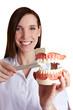 Zahnärztin erklärt das Zähneputzen