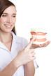 Zahnärztin zeigt auf Gebissmodell