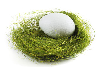 egg in a nest over white