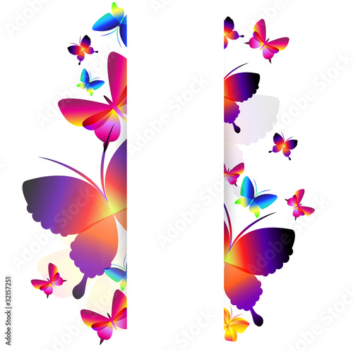 Fototapeta Colorful butterfly background