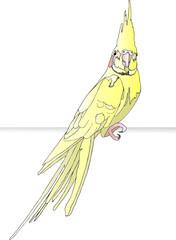 Желтый попугай - Карел
