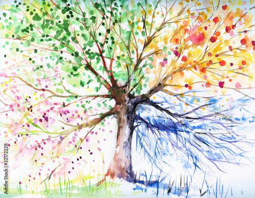 Drzewo czterech sezonów