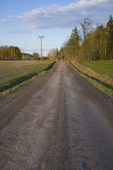 Countryside panorama with road