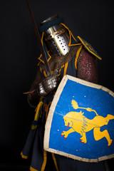 Image of crusader