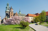 Fototapeta Wawel castle in Krakow, Poland