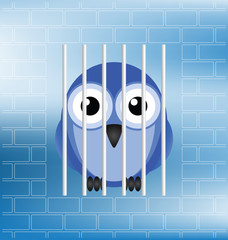 Concept of a jailbird behind bars in prison