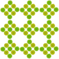 fresh green leaves border background