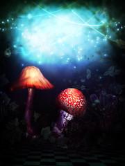 Magic Wonderland