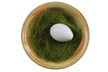 egg in a plate with green grass over white