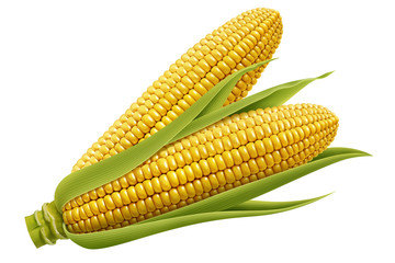 set of fresh corn
