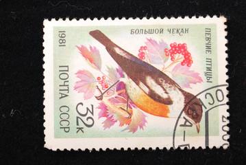 Bolshoy Chekan