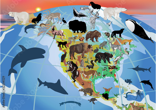 North America and different animals