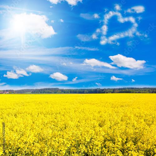Mit Liebe zur Landwirtschaft