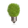 Light bulb made of green grass isolated on white background