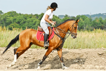 Girl is riding a Akhal-Teke horse
