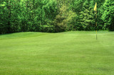 Vibrant image of golf course with flag and fairway in sunny weat poster